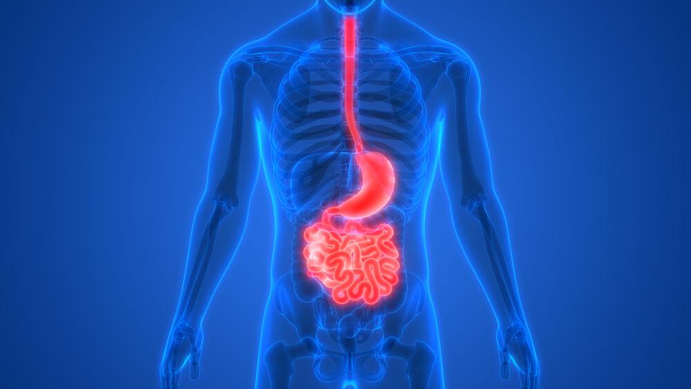 nowotwór żołądka maintrac badanie onkologia